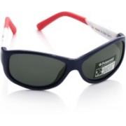 Polaroid Oval Sunglasses(For Girls)