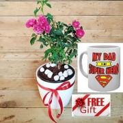 ES KASHMIRI ROSE PLANT DECORATIVE With Freebies Mug