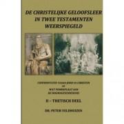 de christelijke geloofsleer in twee testamenten weerspiegeld Thetisch deel - Peter Veldhuizen