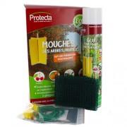 PROTECTA Piège Chromatique attractif mouches
