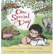 One Special Day: A Story for Big Brothers & Sisters, Hardcover