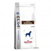7,5kg Royal Canin Gastro Intestinal GI 25 Veterinary Diet pienso para perros