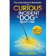 Curious Incident of the Dog In the Night-time, Paperback/Mark Haddon