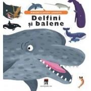 Delfini si balene