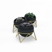 Комплект от 3 броя саксии Umbra Potsy - цвят черно / златно