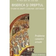 Biserica si dreptul. Vol. 5 Probleme canonice actuale - Liviu Stan