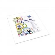 Caiet Desen Info Notes, alb, 30x30cm, 50 coli