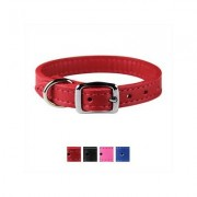 OmniPet Signature Leather Dog Collar, Red, 12-in