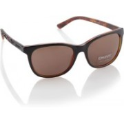 DKNY Rectangular Sunglasses(Brown)