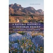 A Natural History of the Sonoran Desert, Paperback/Steven John Phillips