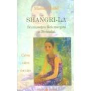 Shangri-La. Frumusetea fara margini a divinului - Marius Ghidel