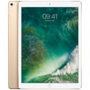 "Apple iPad Pro 12.9"" Wi-Fi + Cellular 512GB - Gold"