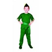 Rg Costumes Elf Costume, Green, Large