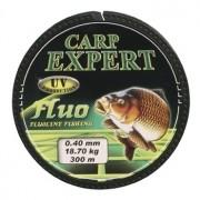 Fir Carp Expert UV Fluo Verde 300m