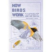How Birds Work: An Illustrated Guide to the Wonders of Form and Function--From Bones to Beak, Paperback/Marianne Taylor