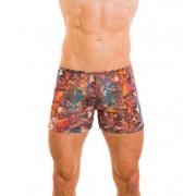 Kiniki Pavo Tan Through Shorts Swimwear PVS