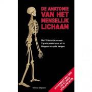 De anatomie van het menselijk lichaam - Roland Muhlbauer en Gerda Raichle