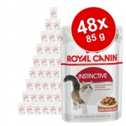 Royal Canin Ekonomipack: Royal Canin vtfoder 48 x 85 g - Intense Beauty i gel