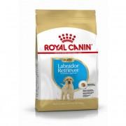 Royal Canin Croquettes Royal Canin Labrador Retriever Junior Sac 3 kg
