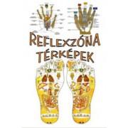 Reflexzóna térképek - Temesvári Gabriella ( HKO)