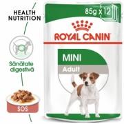 Pachet Royal Canin Mini Adult, 12 x 85 g