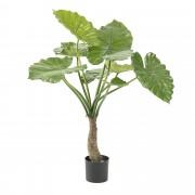 Kave Home Planta alocasia artificial , en Plástico - Verde
