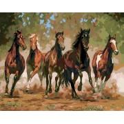 Gaira Malování podle čísel Stádo koní M1497