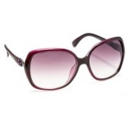 Stacle Over-sized Sunglasses(Violet)