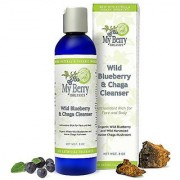 Wild Blueberry & Chaga Cleanser Organic Wild Blueberry and Wild Harvested Maine Chaga Mushroom for Highest in Antioxidants
