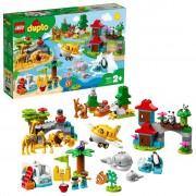 LEGO DUPLO 10907 Dieren Van De Wereld (4117706)
