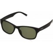 Fastrack Wayfarer Sunglasses(Green)