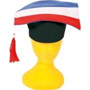 Geen 6x Afstudeerhoedjes/doctoraal geslaagd hoeden rood/wit/blauw