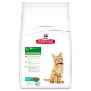 Hill's Feline Kitten с риба тон - 2 x 2 кг