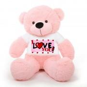 Pink 5 feet Big Teddy Bear wearing a I Love You T-shirt