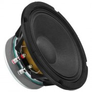 SPA-8PA 8'' högtalare