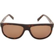 Calvin Klein Wayfarer Sunglasses(Brown)