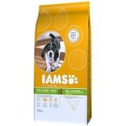 IAMS Dog Puppy & Junior Small & Medium Chicken kölyök- és növendéktáp   Közepes testméretű kutyáknak 12kg