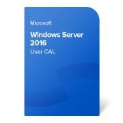 Microsoft Windows Server CAL 2016 User MOLP (R1805123) elektroniczny certyfikat
