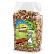 JR Schmaus comida para ratones - 600 g