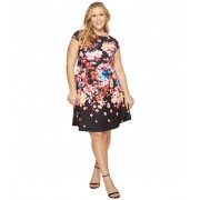 Adrianna Papell Plus Size Spring In Bloom Printed Fit and Flare Black Multi