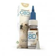 Cibapet CBD Olie 4% Honden - 10ml