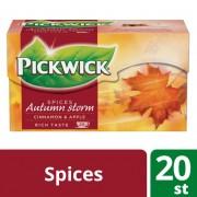 Pickwick Seasons Herfststorm zwarte thee