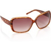 Sisley Over-sized Sunglasses(Brown)