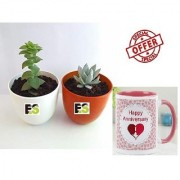 ES SECCULENT PAIR DECORATIVE With Gift Anniversary Gift Mug