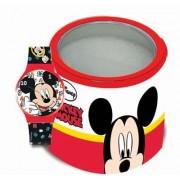 Sat Mickey 561975