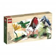 Lego Ideas 21301 Kit de Pajaros