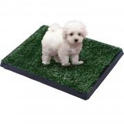 PawHut Alfombra para Perros Negro Verde PP PE PS 51x76x3cm