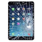 iPad mini 2 Displayglas & Touchscreen Reparatie - Zwart