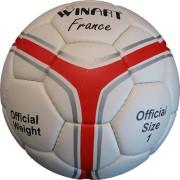 Minge handbal France