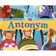 If You Were an Antonym, Paperback/Nancy Loewen